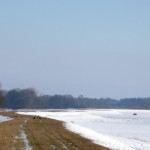 p1010812 (1,5km bei bestem Wetter auf dem Elbdeich spazieren gehen…)