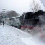 P1020165 (Rügens rasender Roland im Schnee)