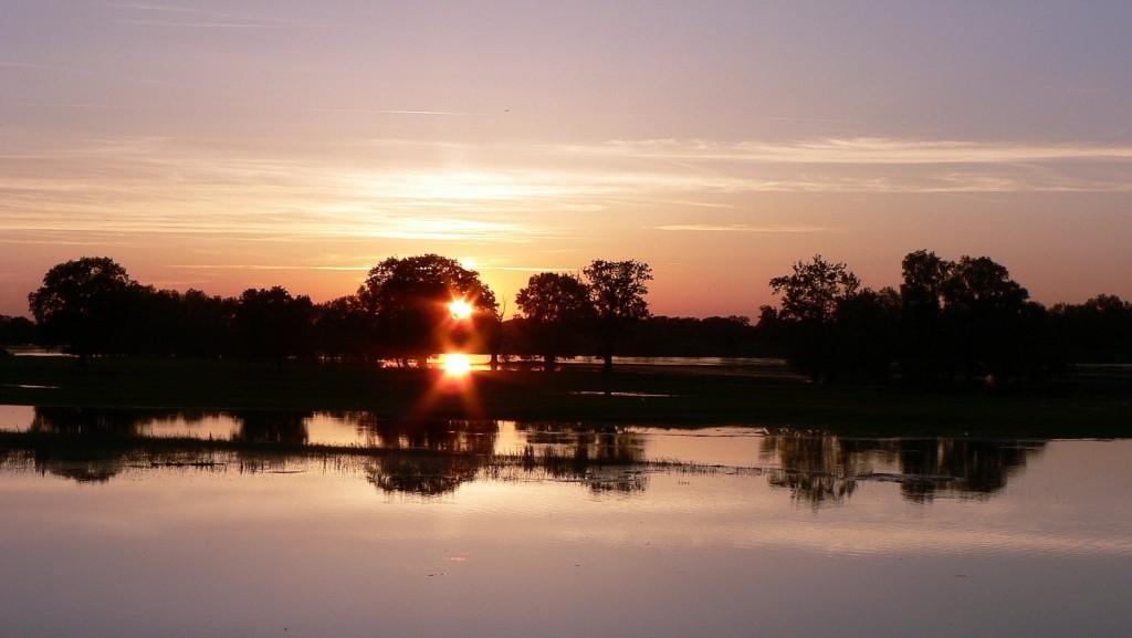 Ein schöner Sonnenuntergang an der Elbe? Stimmt - leider nur auf den ersten Blick. Bei normalem Wasserstand sollten zwischen den Bäumen da hinten und der unteren Kante des Bildes aber Kühe auf den Wiesen stehen...