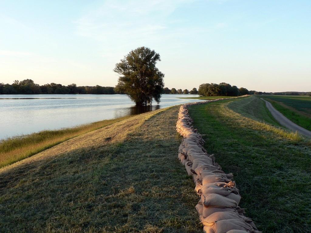 30cm Aufkadung auf dem Deich zwischen Gorleben und Seegemündung. Noch steht das Wasser nicht mal überall am Deichfuß, von den Wiesen ist aber fast nix mehr zu sehen.