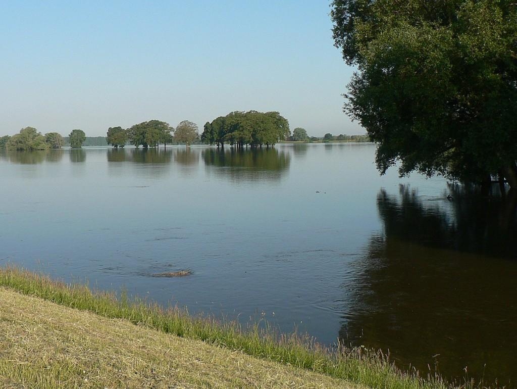 Hier unten kann man jetzt schon gut erkennen wie stark die Strömung der Elbe auf den gesamten Deich drücken wird.