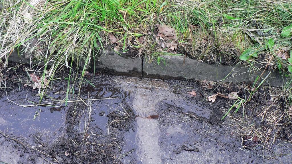 Noch ist nix los – klares Wasser, keine Sedimente.