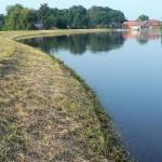P1040545-001 (Elbhochwasser 12.6.2013, am Morgen)